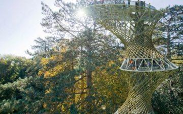 Научный центр от Marks Barfield Architects будет расположен в настоящих джунглях