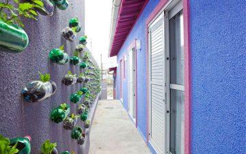 Новые идеи строительства вертикальных садов от фирмы Розенбаум