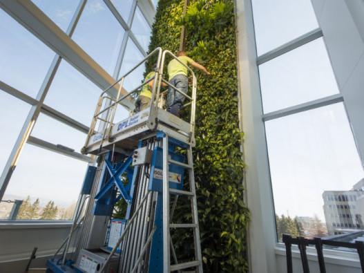 В Квебеке построена самая высокая вертикальная «живая» стена