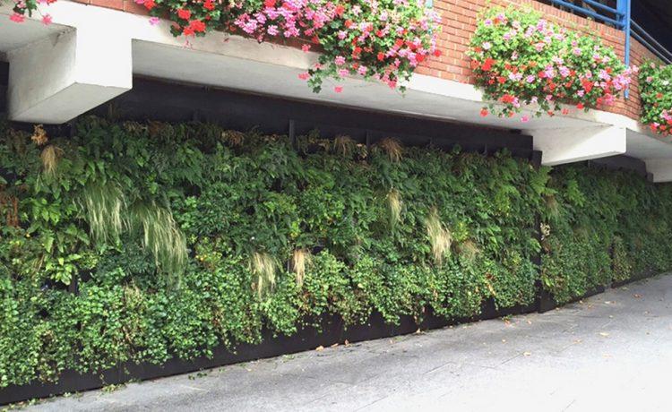 Rain Garden: вертикальный сад, который не потребляет электроэнергию