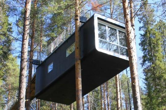 Отель Tree Hotel был построен на вершине дерева.