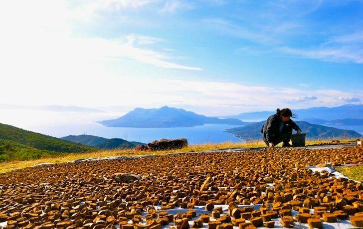 Telaithrion будет первым в Греции эко-поселком