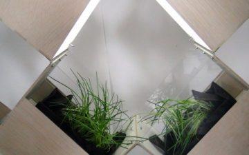 Herb 2: гибкая комнатная перегородка и сад два в одном