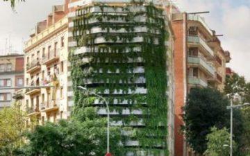Capella Garcia разработала новую конструкцию «живой стены» для дома в Барселоне