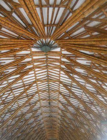 Бамбук: новый супер-конструкционный материал