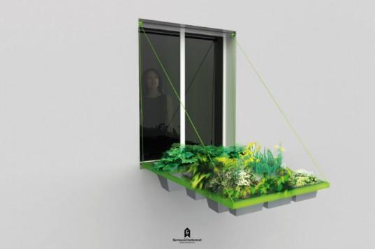 Новый плантатор позволяет выращивать растения прямо в окне