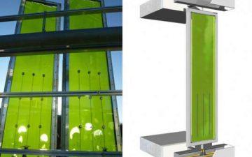 Первое в мире здание с энергообеспечением от морских водорослей, будет построено в Германии