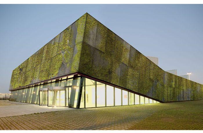 «Биологический бетон» для строительства вертикальных садов