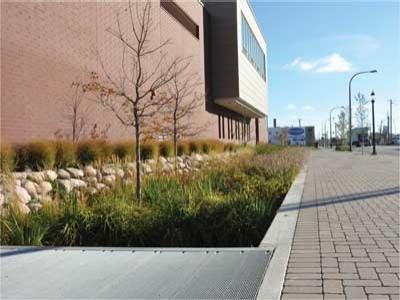 «Самая зеленая улица Америки» станет образцом устойчивого развития городов