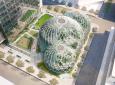 Amazon планирует построить биосферы для своей штаб-квартиры в Сиэтле