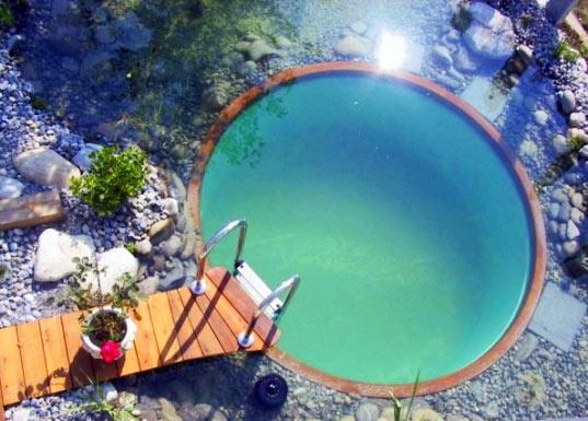 Естественный водоем на участке: без использования химических веществ