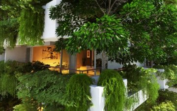Многоэтажный жилой дом в Шри-Ланке станет самым высоким в мире вертикальным садом