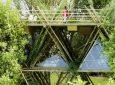 Новая концепция эко-отеля: комфортный отдых в бамбуковом домике на дереве