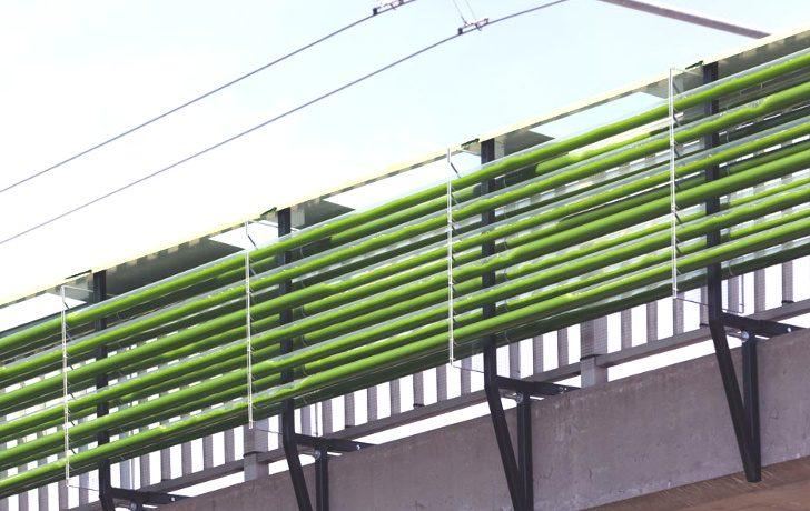 В Швейцарии над шоссе построена ферма по выращиванию водорослей, которая очищает воздух