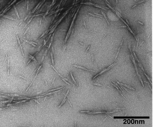 Нанокристаллы изготовленные из целлюлозы увеличат прочность бетона