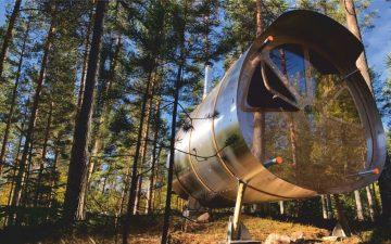 Новый микро-дом, который можно установить на скале или на дереве