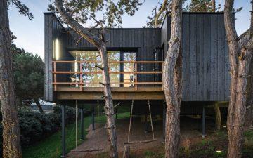 Новый экологичный дом на дереве не наносит вреда окружающей среде