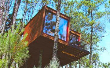 Домики на деревьях, изготовленные из грузовых контейнеров, предлагают незабываемый отдых в Португалии