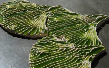 Bio-ID Lab разработали плитку с водорослями для фильтрации загрязненной воды