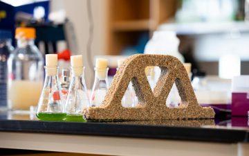 Ученые создали «живые кирпичи», которые могут сами себя восстанавливать