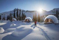Автономные куполообразные коттеджи от FUGU - комфортный отдых в любом климате