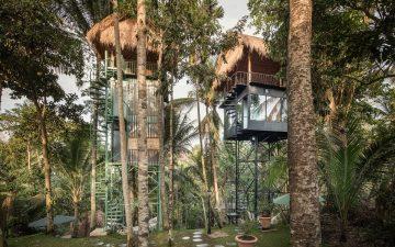 Бутик-отель на дереве - шикарный отдых на минимальной площади