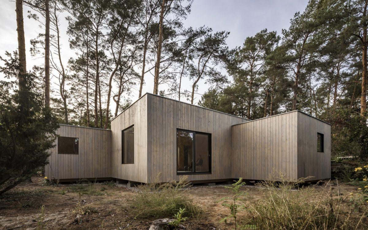 Этот экологичный деревянный дом построен вокруг сосен