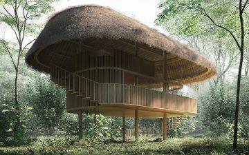 Автономные микро-домики для эко-отдыха в Бразилии