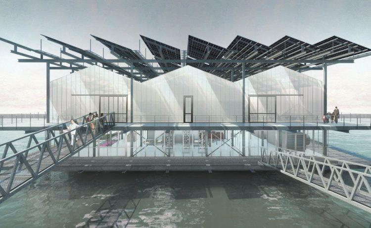 Птицефабрика на солнечной энергии будет плавать в гавани Роттердама