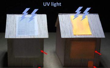 Люминесцентная древесина может освещать комнату
