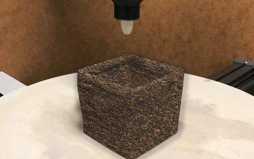 Ученые разработали экологичный звукоизоляционный материал на основе мицелия грибов