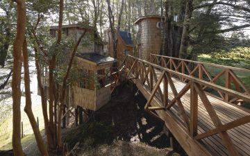 Очаровательные деревянные домики в Чили для комфортного релакса среди деревьев