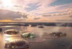 Тропический рай в северном Хельсинки? Это возможно!